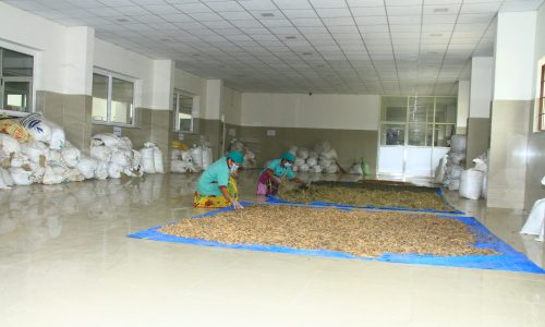 Shade drying area